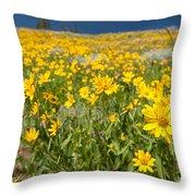 Yellowstone Wildflower Throw Pillow