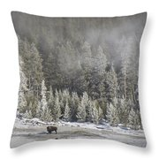 Yellowstone Winter Landscape Throw Pillow