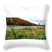 Yellowwood Lake, Southern Indiana Throw Pillow