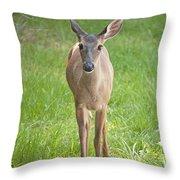 Yes Deer Throw Pillow