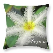 Yes You Are A Pure Shining Star Throw Pillow