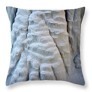 Yetti's Paw Throw Pillow