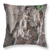 Yew Tree Roots Throw Pillow