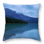Yoho Throw Pillow