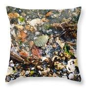 York Beach Shore Throw Pillow