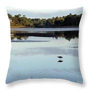 York River, Maine Throw Pillow