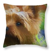 Yorkie In The Grass - Painting Throw Pillow