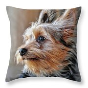 Yorkshire Terrier Dog Pose #2 Throw Pillow