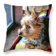 Yorkshire Terrier Dog Pose #8 Throw Pillow