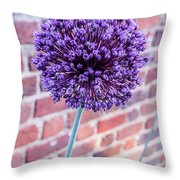 Yorktown Onion Bloom Throw Pillow