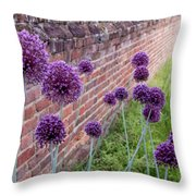 Yorktown Onions Along The Wall Throw Pillow