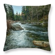 Yosemite #1 Throw Pillow