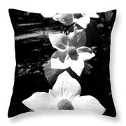 Yosemite Dogwoods Black And White Throw Pillow