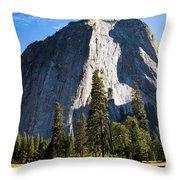 Yosemite Meadow 2 Throw Pillow