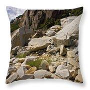 Yosemite Rockslide Throw Pillow