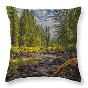 Yosemites N Park Throw Pillow