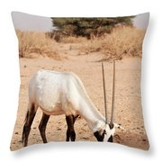 Yotvata Hai-bar Reserve Throw Pillow