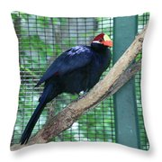You Are My Audience - Bird Perched Throw Pillow
