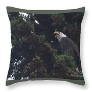 You Are Not Welcome Throw Pillow
