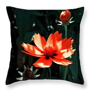 You Are So Beautiful ... Throw Pillow