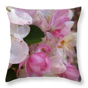You Cant Be Crabby In Spring Throw Pillow