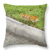 You First. No You Go First Throw Pillow