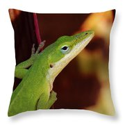 You Know Better Throw Pillow