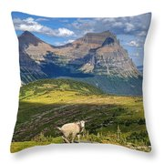 You Like My Home? Throw Pillow