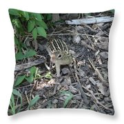 You There - Ground Squirrel Throw Pillow