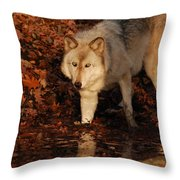 You Want A Piece Of Me Throw Pillow
