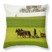 Young Amish Farmer Throw Pillow