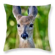 Young And Pretty Throw Pillow