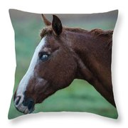 Young Blind Horse In The Rain Throw Pillow