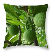 Young Breadfruit Throw Pillow