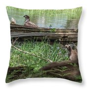 Young Buck Watching Eagle Throw Pillow