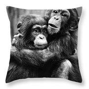 Young Chimpanzees Throw Pillow
