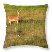 Young Deer Throw Pillow