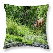 Young Doe Among The Flora, No. 2 Throw Pillow