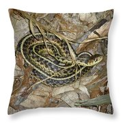 Young Eastern Garter Snake - Thamnophis Sirtalis Throw Pillow
