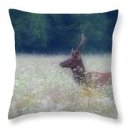 Young Elk In The Smokies. Throw Pillow