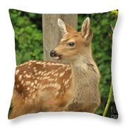 Young Fawn Throw Pillow