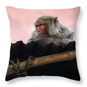 Young Female Asian Monkey Sitting On The Roof Throw Pillow
