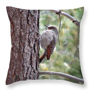 Young Flicker Throw Pillow