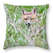 Young Fox Kit Hiding In Tall Grass Throw Pillow