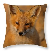 Young Fox Throw Pillow by William Jobes