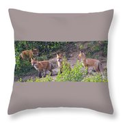 Young Foxes At The Den Throw Pillow