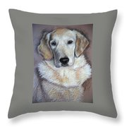 Young Golden Retriever Throw Pillow