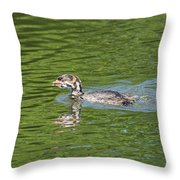Young Grebe Throw Pillow