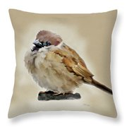 Young House Sparrow Throw Pillow
