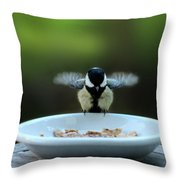 Young Hungry Tit Throw Pillow